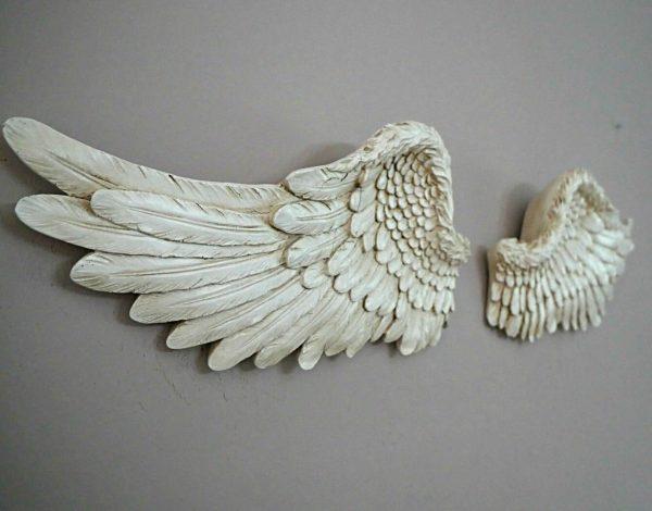 White large Angel Wings