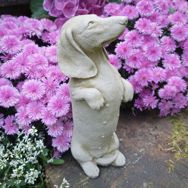 Garden Dachshund Sausage Dog