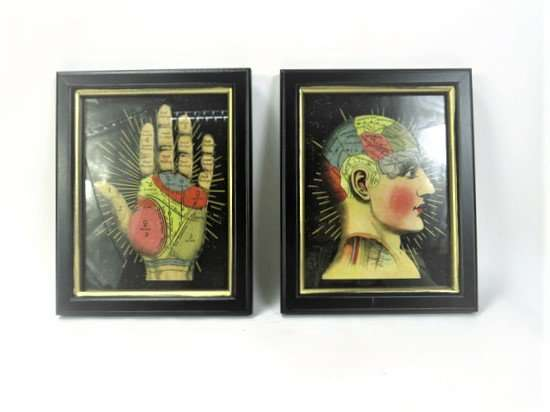 Phrenology Wall Framed Pictures